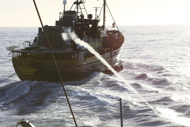 (一財)日本鯨類研究所サイトマップ概要日鯨研を応援する調査研究Q&Aリンクプレスセンターアーカイブ2009/10年第二期南極海鯨類捕獲調査(JARPAII)−妨害行動の概要−