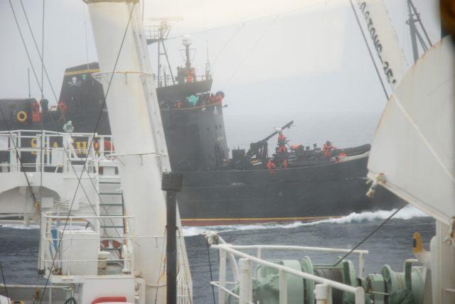【捕鯨】シーシェパード、捕鯨船をオーストラリア領海から追放。「追跡開始後、1頭も殺させていない」と豪語(画像等)