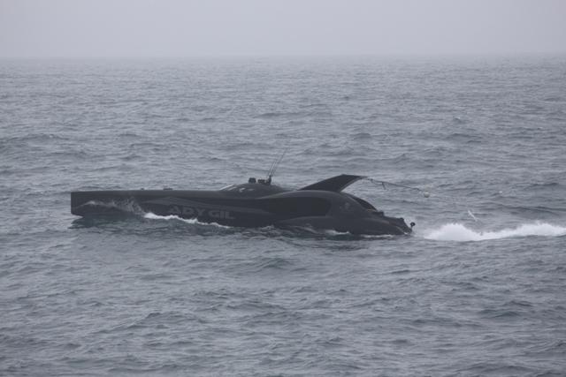 一財)日本鯨類研究所 : 調査へ...